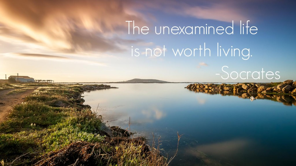 unexamined-life